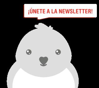 newsletter mascotas avila
